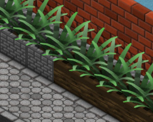 New plant pots with a variant